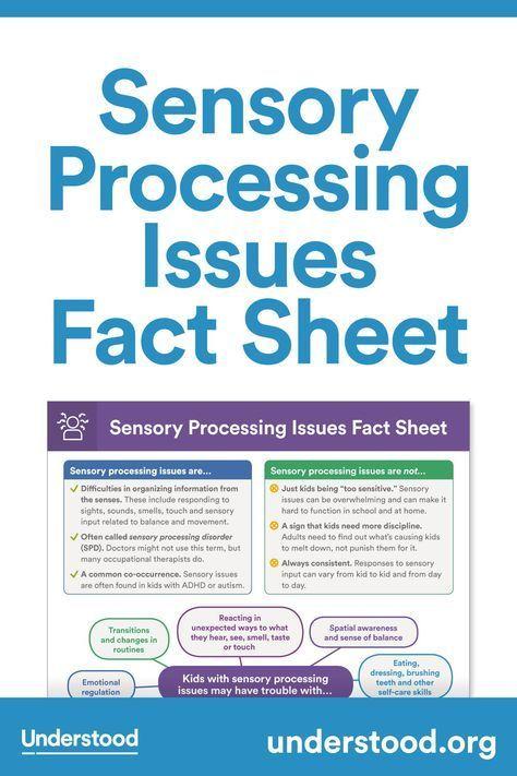 How Sensory Processing Issues Affect >> Sensory Processing Issues Fact Sheet Sensory Sensory Processing
