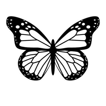 Free Vector Butterfly Vector This Is A Free Vector Graphic That You Can Download At Www 4vector Com Ve Butterfly Stencil Butterfly Drawing Butterfly Painting