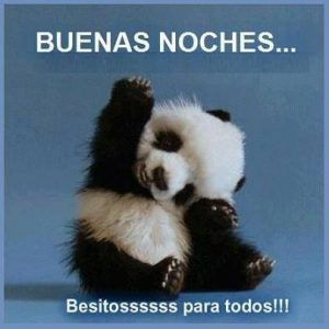 Imagenes De Buenas Noches Para Grupos Whatsapp Pandas Animales Mascotas