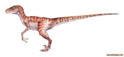 Todos Os Dinossauros De Jurassic Park Ate Jurassic World Reino