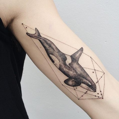 I like the size and position of this. Orca whale on inner bicep with prismatic power geometry. Its a swimmer! Thanks Andrew!