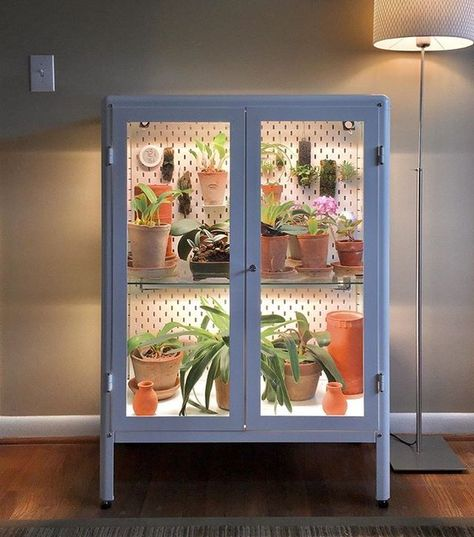 People Are Hacking IKEA Cabinets Into Indoor Gardens One of the more genius uses of IKEA's Fabrikör cabinet is completely hacking the cabinet into an indoor greenhouse. Indoor Greenhouse, Greenhouse Plans, Diy Mini Greenhouse, Ikea Plants, Indoor Plants, Indoor Gardening, Vegetable Gardening, Container Gardening, Gardens