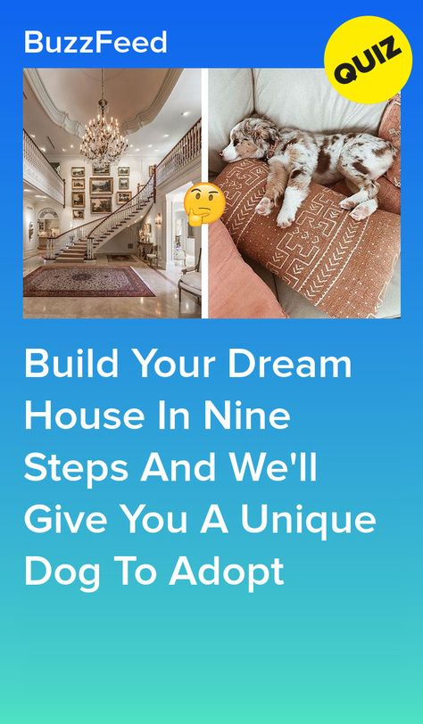 Build Your Dream House In Nine Steps And We'll Give You A Unique Dog To Adopt