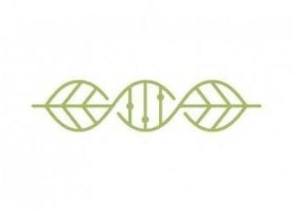 42 Ideas Plants Logo Science Plants Plant Logos Dna Logo Natural Logo