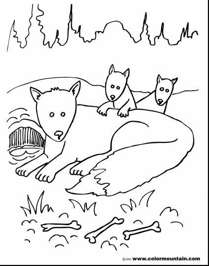 25 Interesting Fox Coloring Pages Your Toddler Will Love Fox Coloring Page Animal Templates Coloring Pages