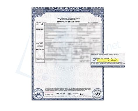 23 best state of nevada sample apostille images on pinterest