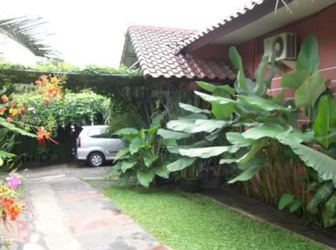Desain Taman Gaya Bali Edy Jerinx Small Garden Design Small