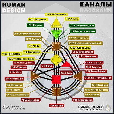 дизайн человека каналы 5