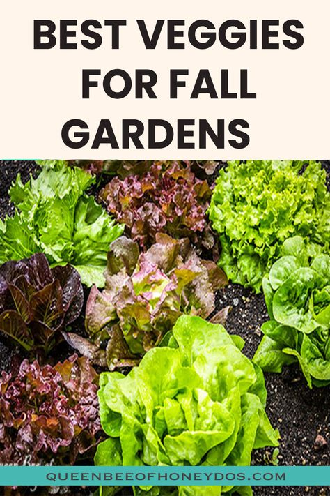 What To Plant In Your Fall Garden Autumn Garden Vegetable