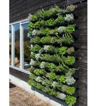 Vertikaler Garten Fur Aussen Im Greenbop Online Shop Kaufen Vertikaler Garten Bepflanzung Wandgarten