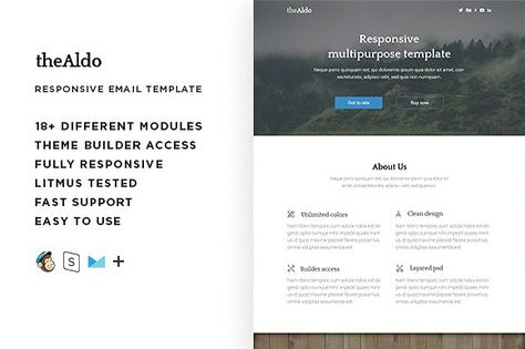 Aldo – Responsive Email template