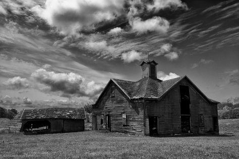 abandoned americana