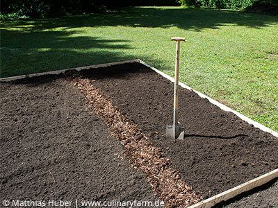 Pin Von Jordana Araiza Auf Beste Ideen Gartengestaltung Gemusebeet Gemusegarten Anlegen Gartenbeet