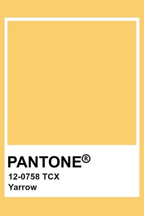 Pantone Yarrow