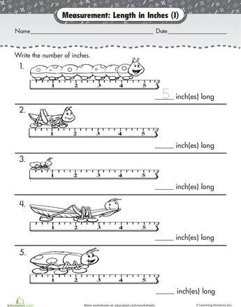 Measuring Bug Inches Worksheet Education Com Measurement Worksheets Kids Math Worksheets Preschool Worksheets Measuring inches worksheet