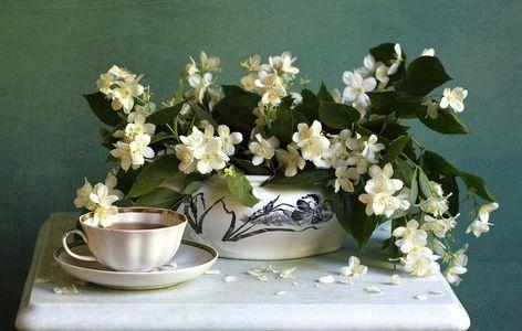 чай с жасмином эффект
