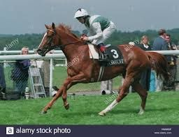 Pin On 1000 Guineas Fillies Only 1814 Current