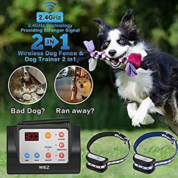 Wiez Dog Fence Wireless And Training Collar Outdoor 2 In 1