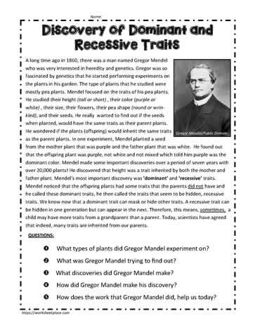 Dominant And Recessive Traits Worksheet Template Teaching Science Heredity Dominant and recessive traits worksheet