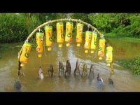 Believe This Fishing? Unique Fish Trapping System | New Technique Of Catching Village Fish - YouTube