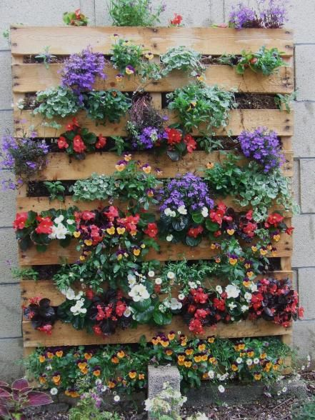 There are lots of clever ways to put those old pallets to good use in the garden.