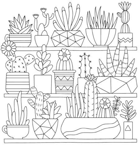 13 Best Succulent Cactus Coloring Books Pages Pattern