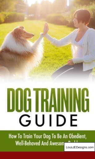 Training A Dog Not To Jump Fences And Pics Of How To Leash Train A