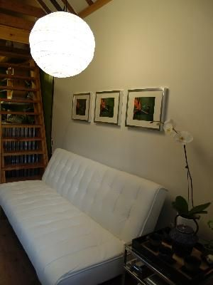 Emily Convertible Futon Multiple Colors Furniture Com
