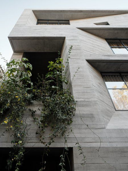 Photo 2 Of 22 In This Rick Joy Designed Apartment In Mexico City Is Apartment Building Concrete Design Traditional Building