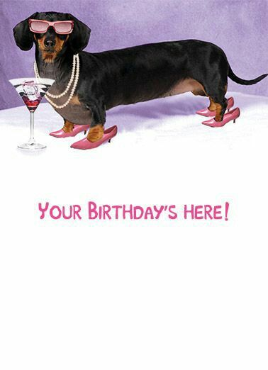 Birthday With Images Dachshund Birthday Weiner Dog Birthday