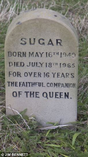The puppy was given to the Queen on her 18th birthday by King George VI, and her gravestone calls her 'the faithful companion of the Queen', an epitaph which is also used on the headstones of two of her descendants, Sugar and Heather. A stone boundary wall inset with plaques [commemorating more pets] separates the pet cemetery from the rest of the estate.