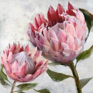 Protea I Oil Painting Flower Art Painting Protea Art Floral Oil Paintings