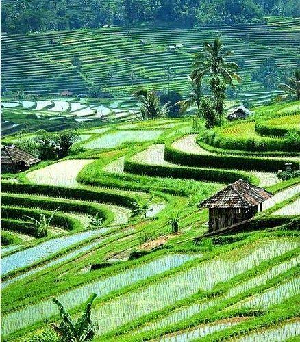 Terpopuler 30 Gambar Pemandangan Indah Dunia Kumpulan Gambar Pemandangan Alam Terindah Di Dunia A Photo Download The World S Most R Di 2020 Pemandangan Bali Alam