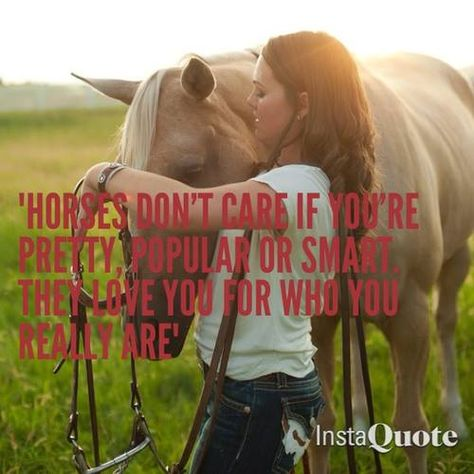Horses are smarter than you think. Cute Horses, Beautiful Horses, Beautiful Dream, My Horse, Horse Love, Horse Girl Problems, Inspirational Horse Quotes, Horse Riding Quotes, Equestrian Quotes