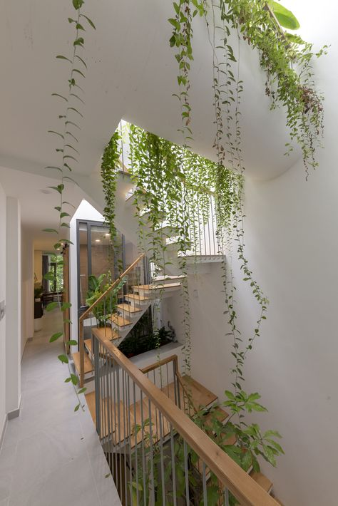 KHUÔN studio shields an inner oasis with 'armoured' façade in ho chi minh city Home Interior Design, Exterior Design, Interior And Exterior, Interior Garden, Interior Plants, Aesthetic Room Decor, Aesthetic Plants, Room Goals, Dream Apartment
