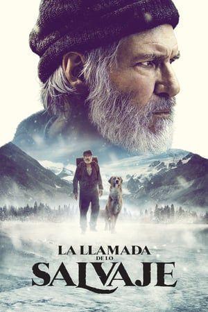 La Llamada De Lo Salvaje 2020 Filmes Dublados Em Portugues Assistir Filmes Gratis Assistir Filmes Gratis Dublado