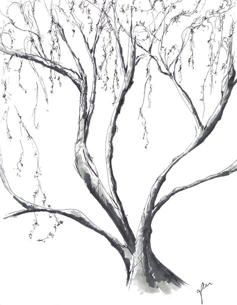 Cali Tree 6