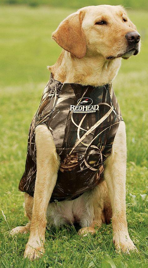 Redhead Neoprene Dog Vest Bass Pro Shops Con Imagenes Mascotas