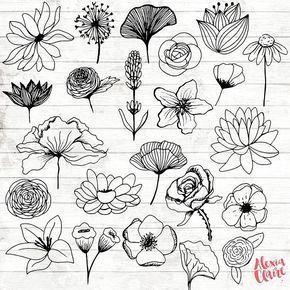 Blumen Clipart 23 Hand Gezeichnete Blumencliparts Realistische Blumenlogokunst Blumenlogo Elemente Blumenvektor Acgabw15 Flower Drawing Flower Sketches Flower Art