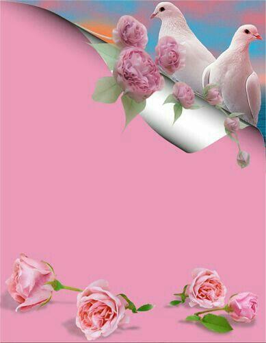 اطار للكتابه جميل جدا Flower Wallpaper Flower Frame Frame Border Design