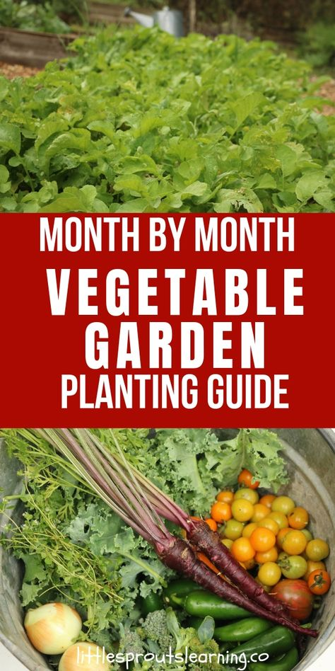 Month by Month Vegetable Garden Planting Guide - Little Sprouts Learning