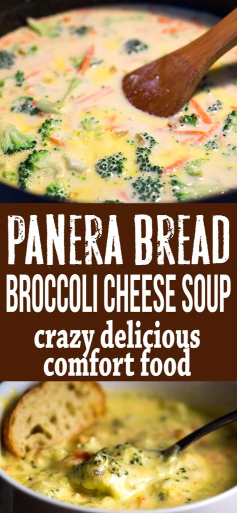 Brocolli Cheddar Soup, Panera Broccoli And Cheese Soup Recipe, Cheddar Soup Recipe, Cheesy Broccoli Soup, Broccoli Soup Recipes, Vegetarian Recipes, Cooking Recipes, Broccoli Califlower Soup, Dining