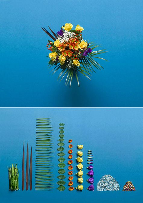 Ursus Wehrli (Swiss artist and comedian) Tidy Up Art