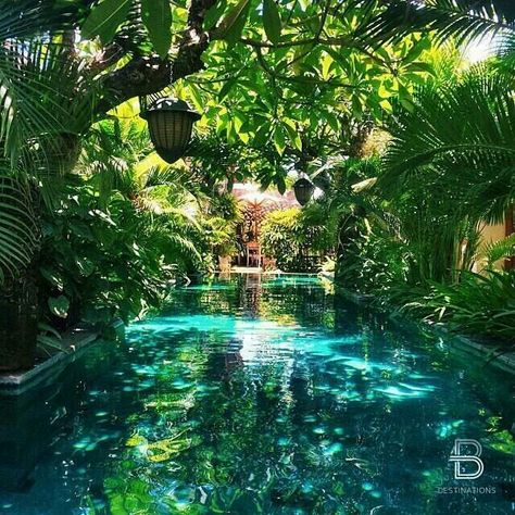 Having a pool sounds awesome especially if you are working with the best backyard pool landscaping ideas there is. How you design a proper backyard with a pool matters. Beautiful Pools, Beautiful Places, Dream Pools, Cool Pools, Dream Vacations, Romantic Vacations, The Places Youll Go, Places To Travel, Travel Destinations