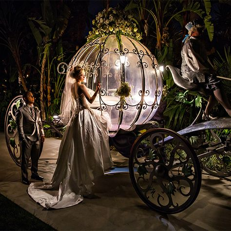 When I think of a modern, sophisticated fairy tale wedding Chris and Jessica's captivating Disneyland wedding is exactly what comes to mind. Fairytale Weddings, Cinderella Wedding, Cinderella Dresses, Disney Weddings, Disney World Wedding, Pnina Tornai, Wedding Spot, Dream Wedding, Magical Wedding