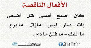 بحث عن المجرد والمزيد من الأفعال تعريف أوزان تمارين أمثلة واضحة أنا البحر Math Math Equations Arabic Calligraphy