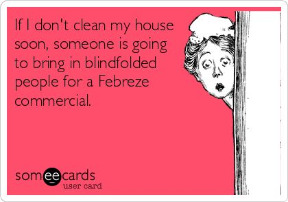 Clean My House if i don't clean my house soon, someone is going to bring in