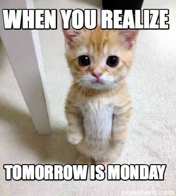Pin On Oh No Monday