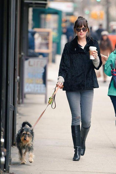 walking your dog be like... Dakota Johnson