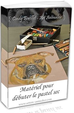 Materiel Pour Debuter Le Pastel Sec Pastel Sec Crayon Pastel